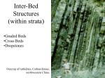 inter bed structures within strata
