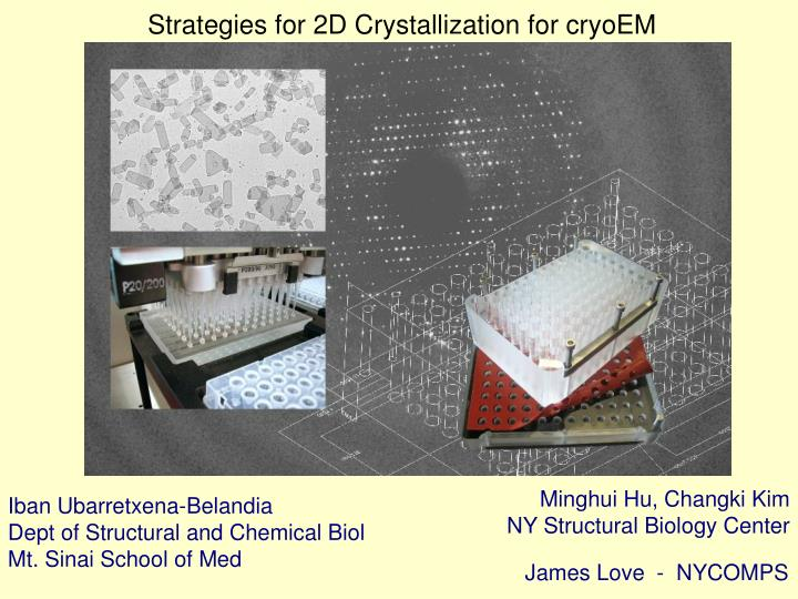 Strategies for 2D Crystallization for cryoEM