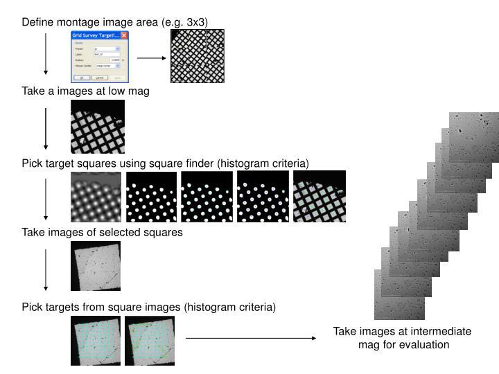 Define montage image area (e.g. 3x3)