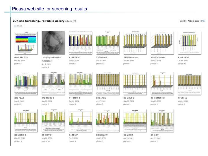 Picasa web site for screening results