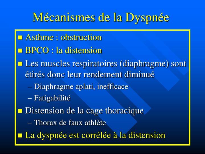 Mécanismes de la Dyspnée