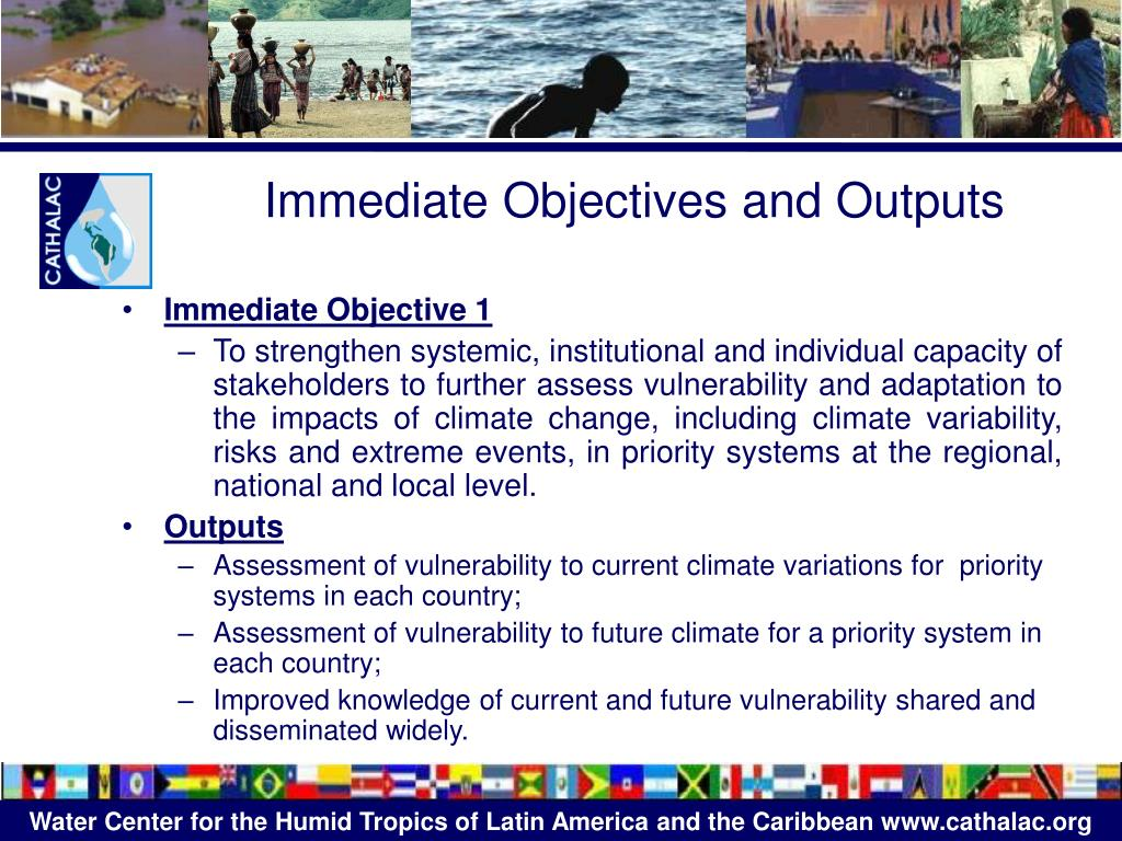 Immediate Objectives and Outputs