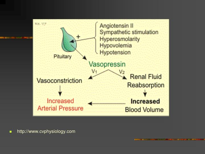 http://www.cvphysiology.com