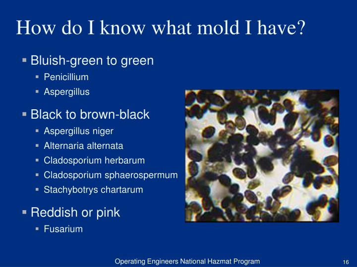 Bluish-green to green