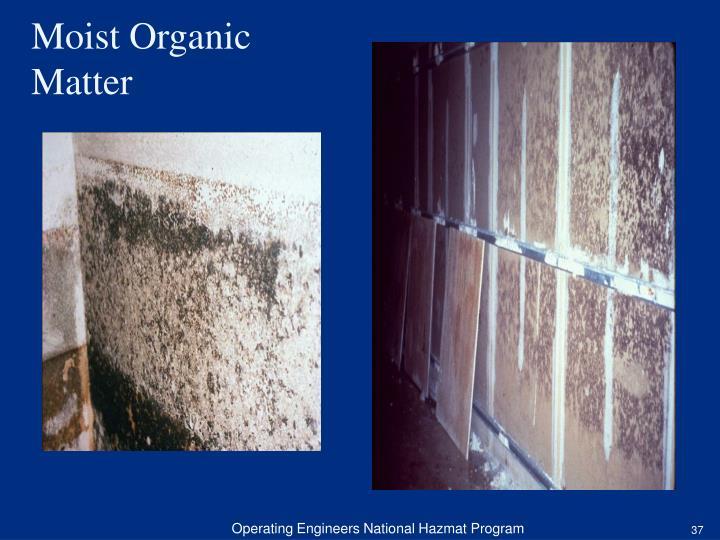 Moist Organic Matter
