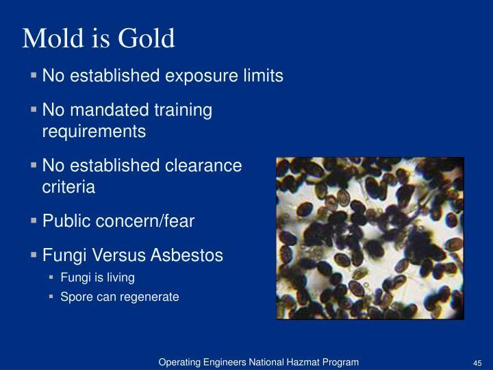 No established exposure limits