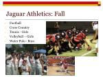 jaguar athletics fall