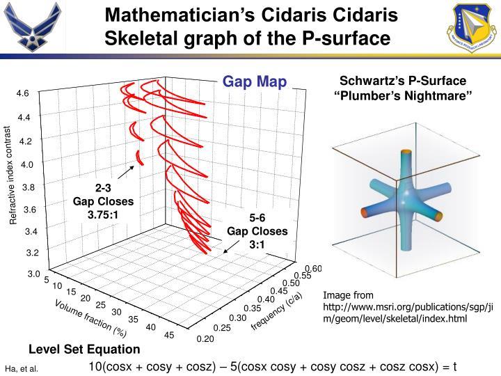 Mathematician's Cidaris Cidaris