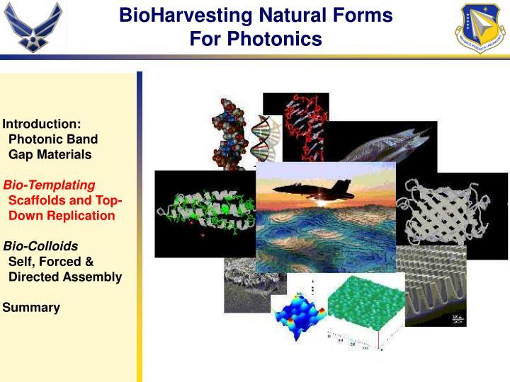 BioHarvesting Natural Forms