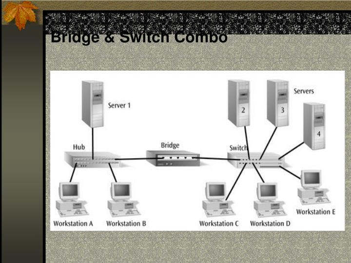 Bridge & Switch Combo