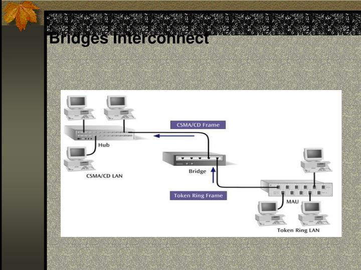 Bridges Interconnect