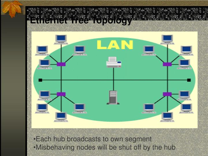 Ethernet Tree Topology
