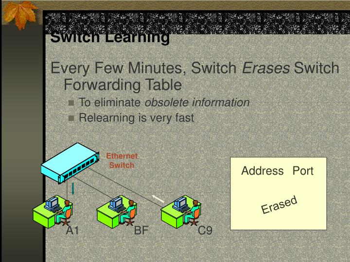 Switch Learning