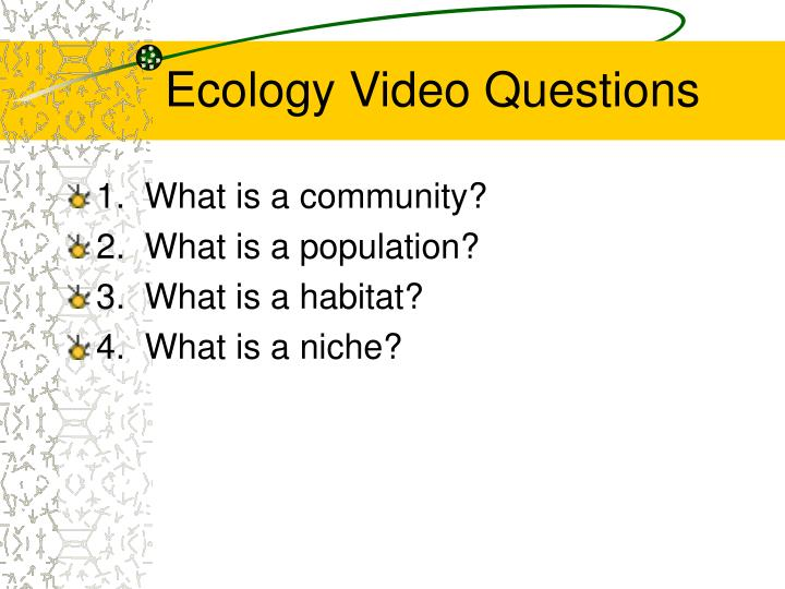Ecology Video Questions