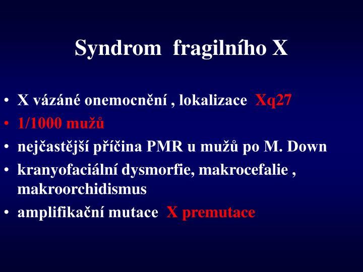 Syndrom  fragilního X