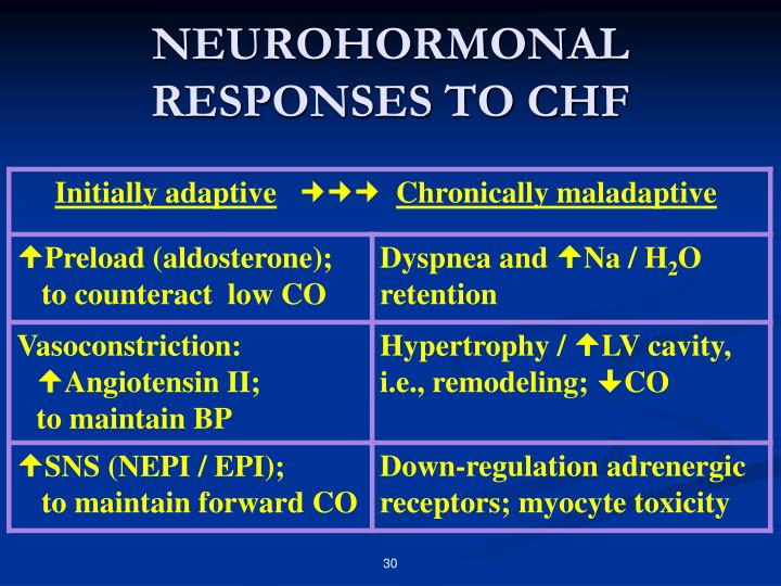 NEUROHORMONAL RESPONSES TO CHF