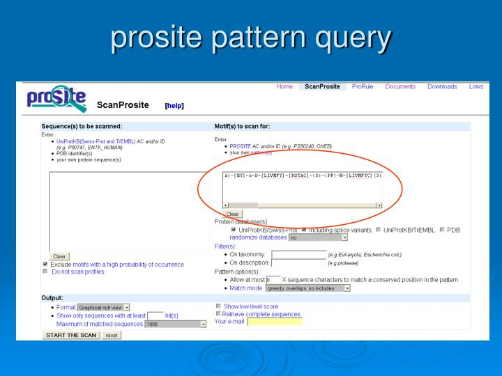 prosite pattern query