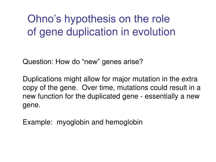Ohno's hypothesis on the role of gene duplication in evolution