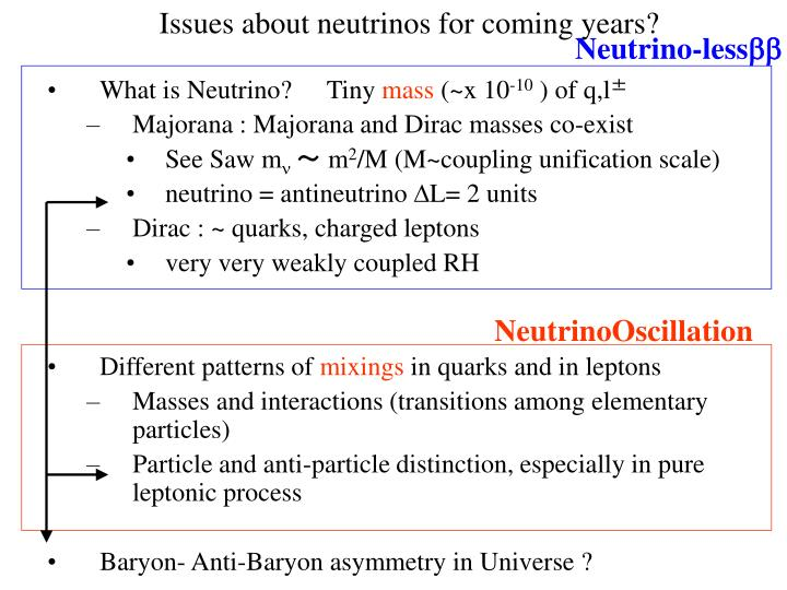 Issues about neutrinos for coming years?
