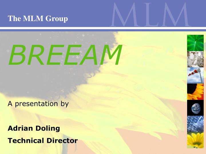 The MLM Group