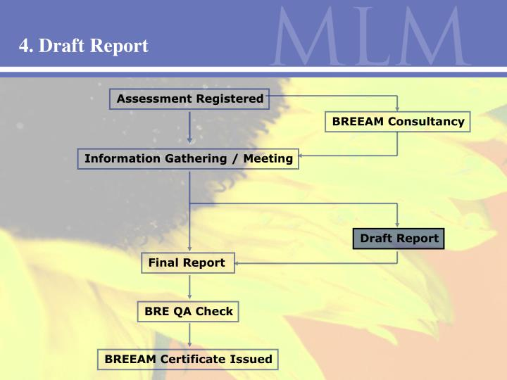 4. Draft Report
