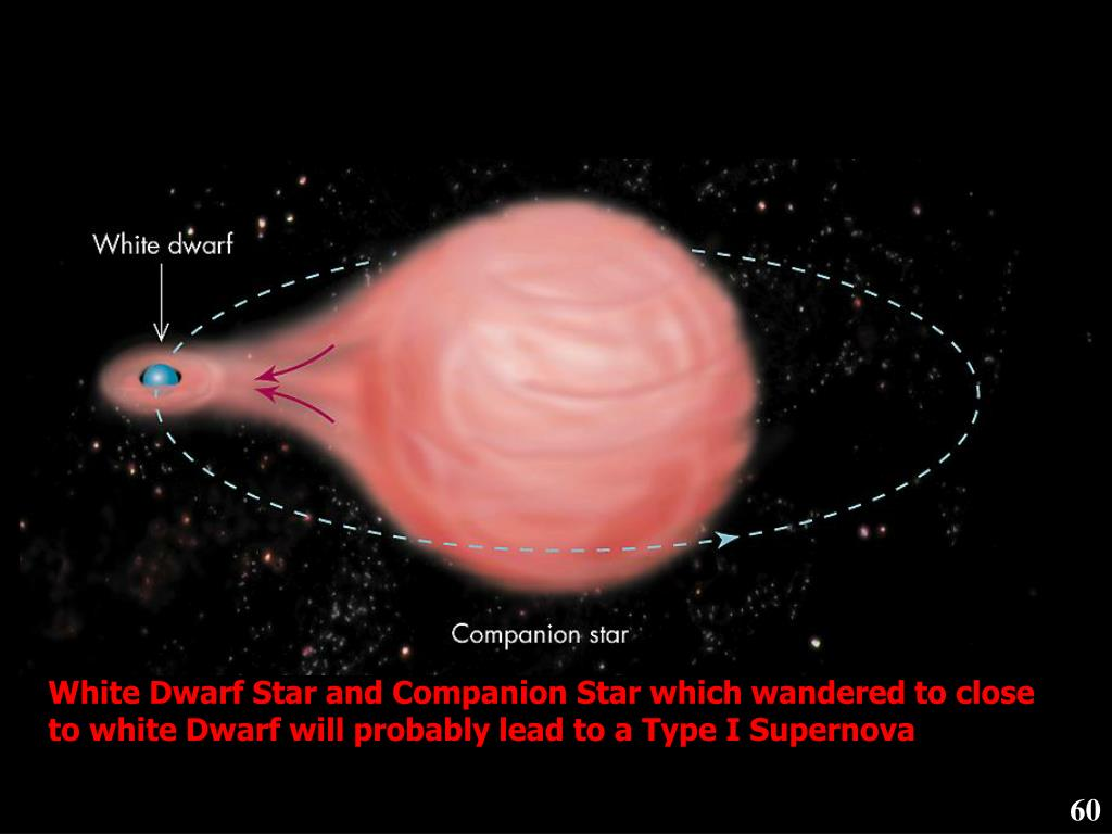 White Dwarf Star and Companion Star which wandered to close to white Dwarf will probably lead to a Type I Supernova