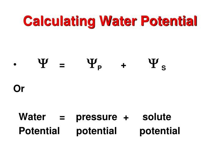 Calculating Water Potential