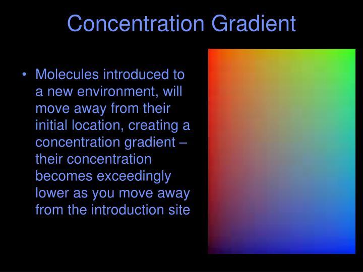 Concentration Gradient