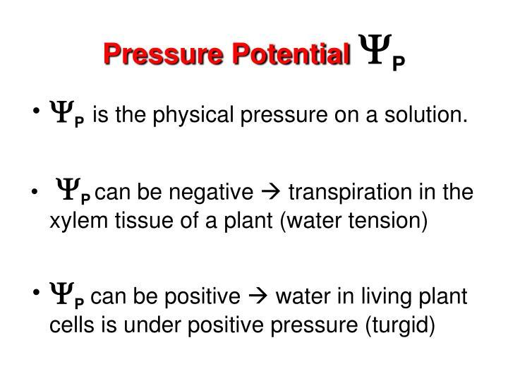 Pressure Potential