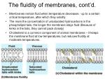 the fluidity of membranes cont d