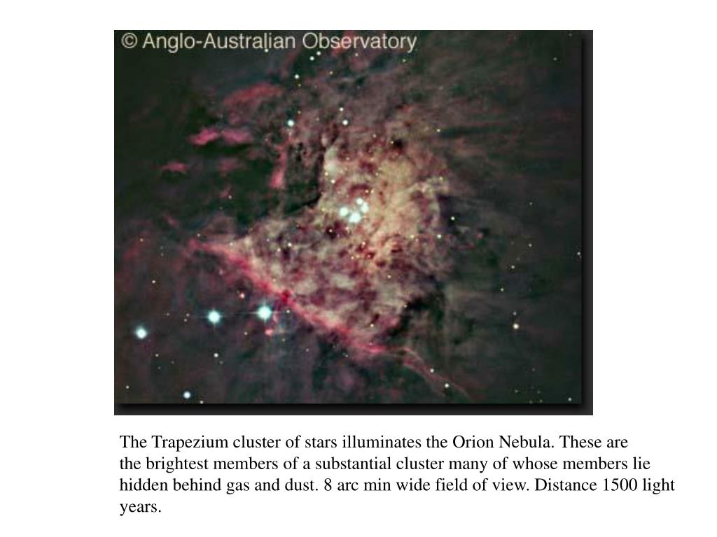 The Trapezium cluster of stars illuminates the Orion Nebula. These are