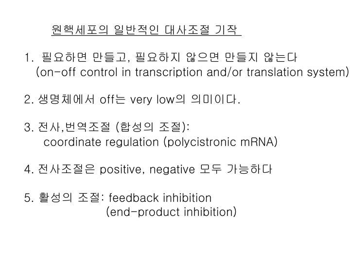 원핵세포의 일반적인 대사조절 기작