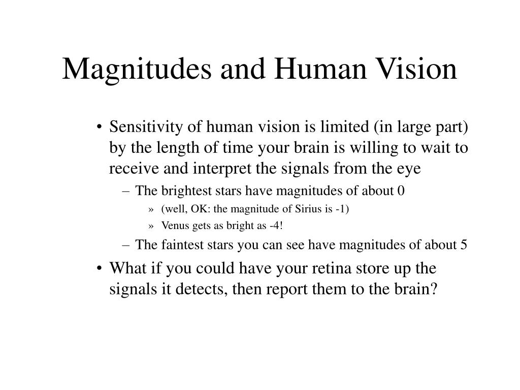 Magnitudes and Human Vision