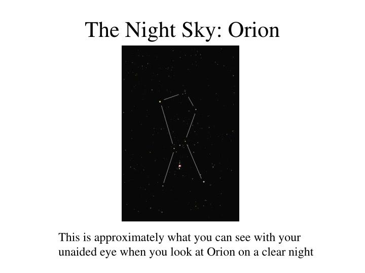 The night sky orion