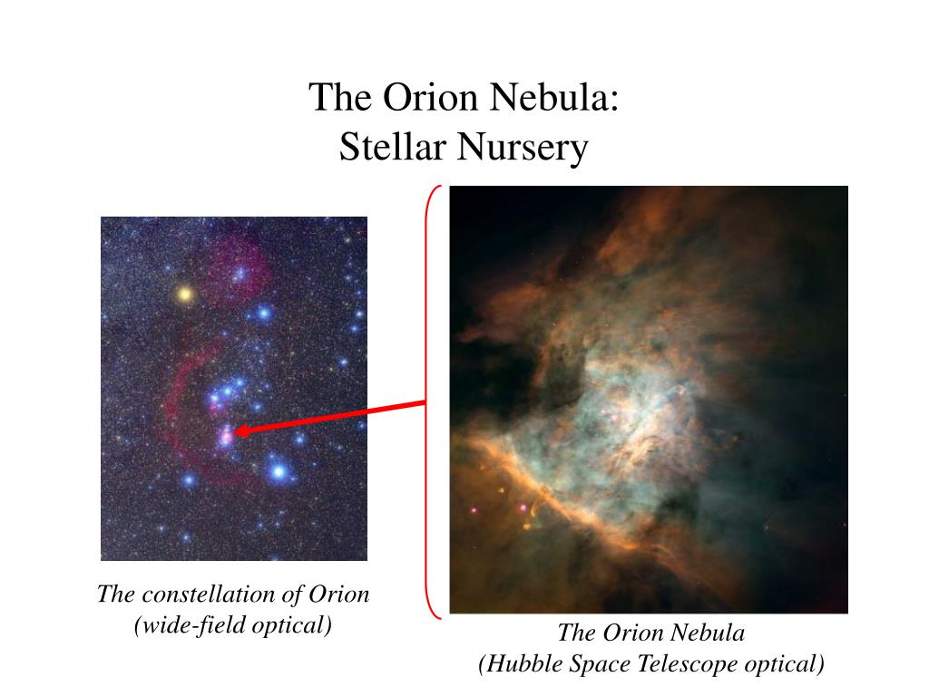 The Orion Nebula: