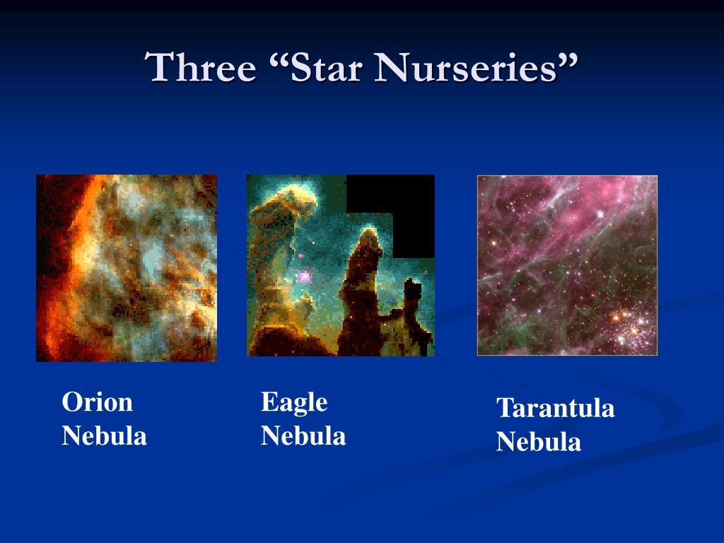 """Three """"Star Nurseries"""""""