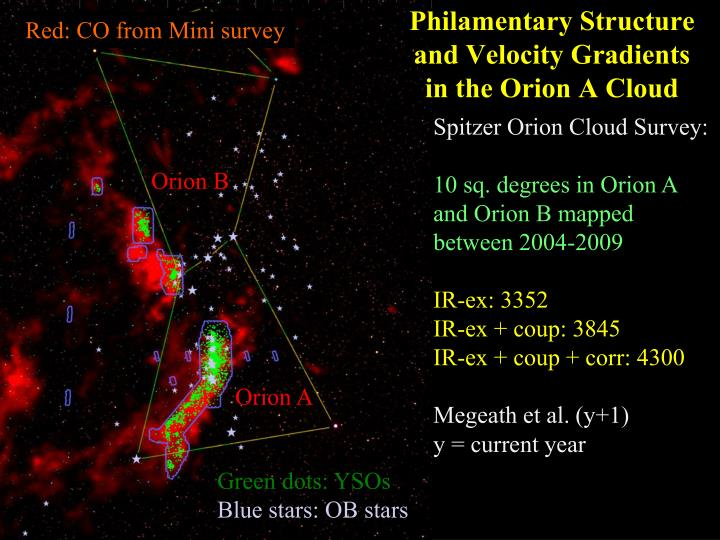 Philamentary structure and velocity gradients in the orion a cloud