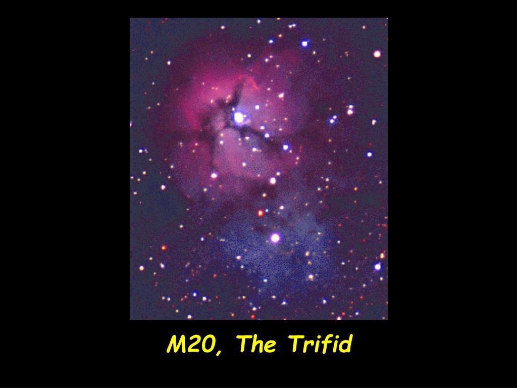 M20, The Trifid