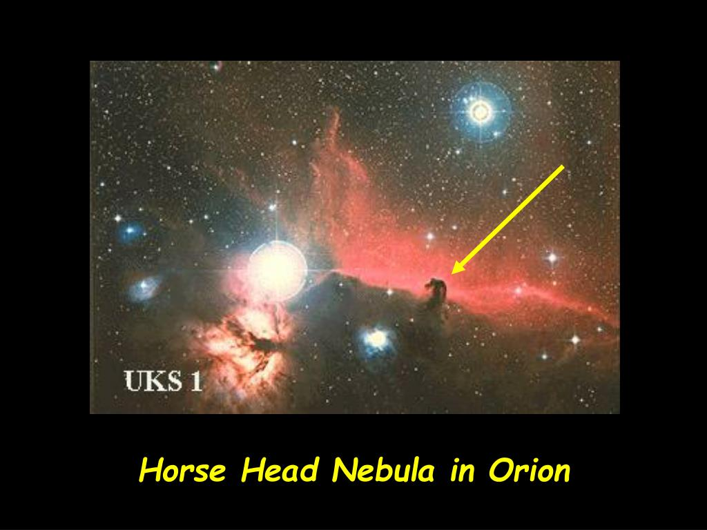 Horse Head Nebula in Orion