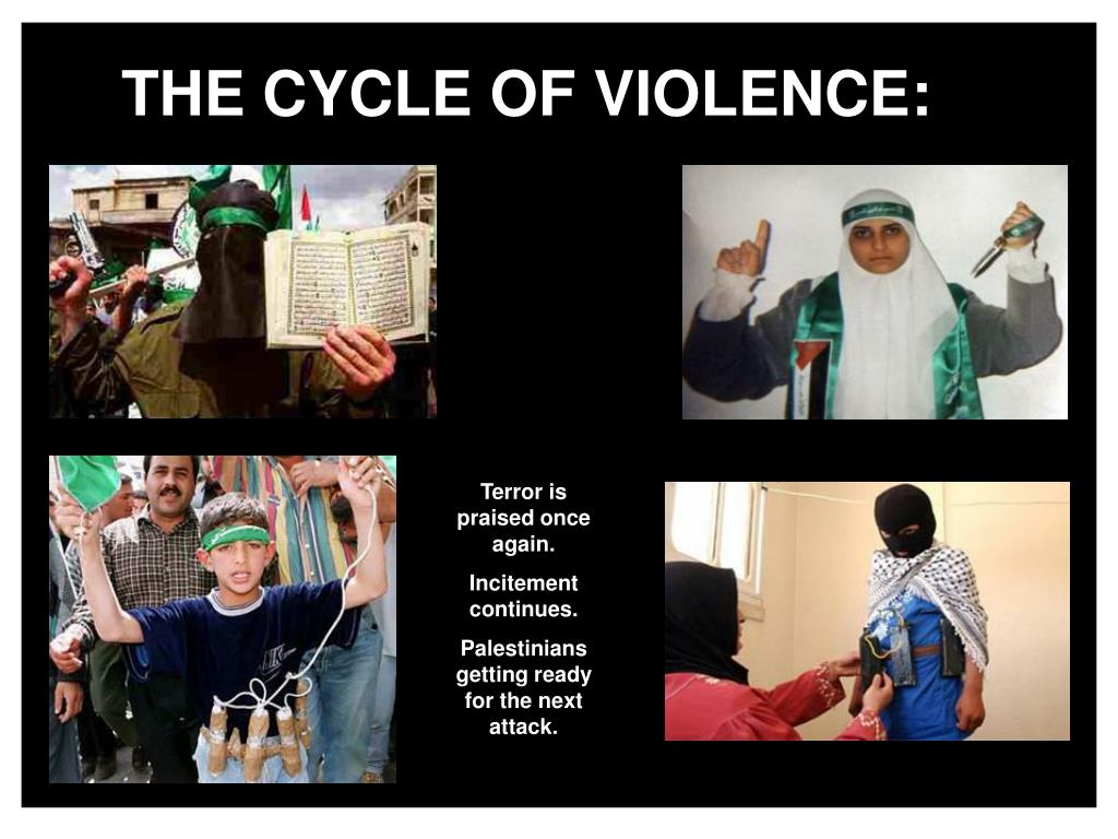 THE CYCLE OF VIOLENCE: