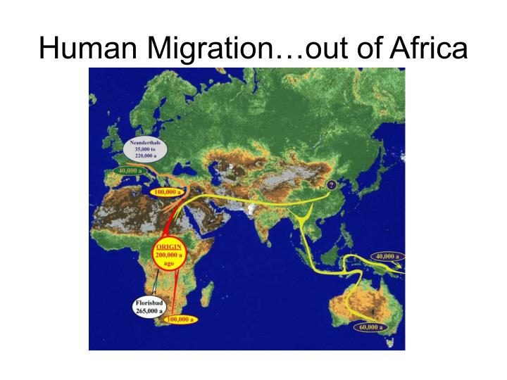 Human Migration…out of Africa