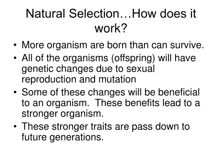 Natural Selection…How does it work?