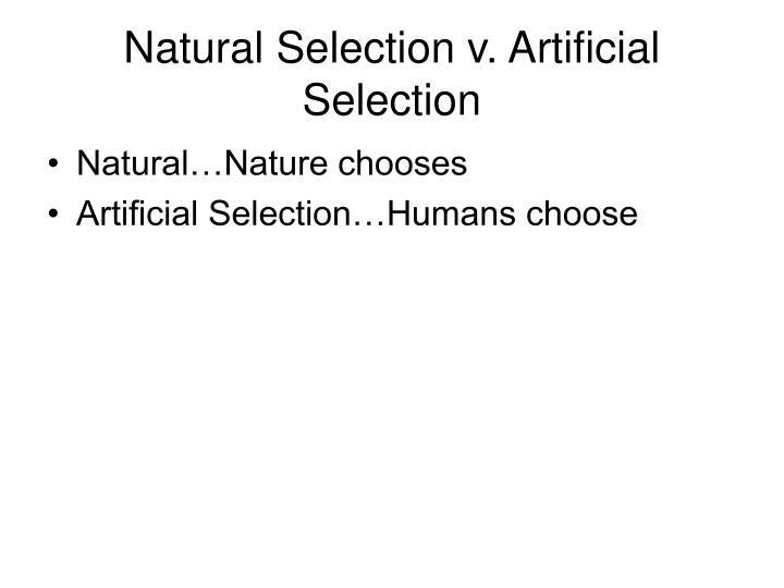 Natural Selection v. Artificial Selection