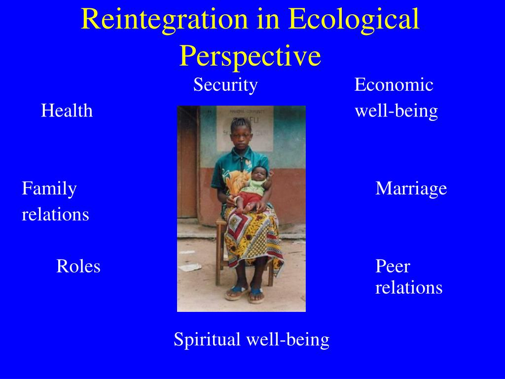 Reintegration in Ecological Perspective