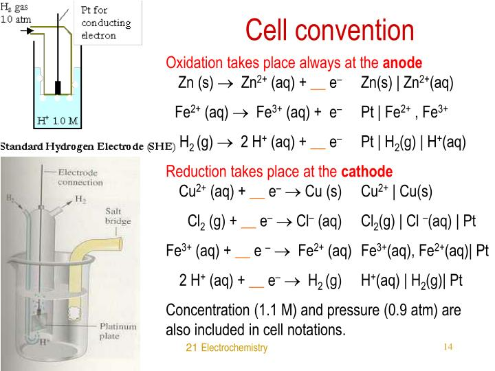 Cell convention