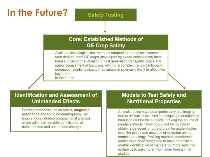 Safety Testing