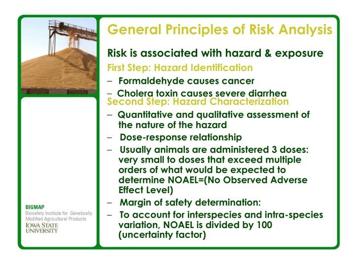 General Principles of Risk Analysis