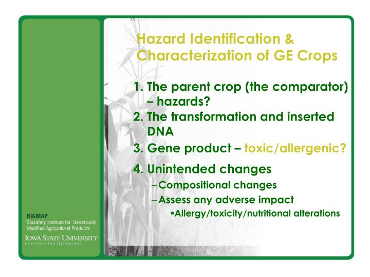 Hazard Identification &
