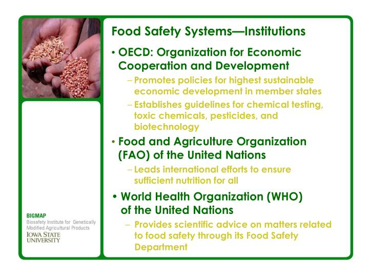 Food Safety Systems—Institutions