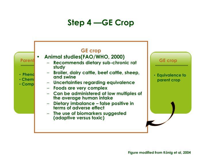 GE crop